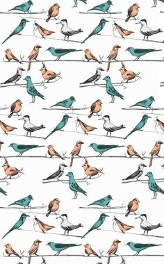 Pattern by Lydia Garner, via Behance