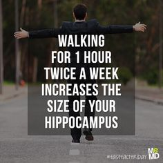 Walking for just one hour twice a week increases the size of your hippocampus - memory storage of the brain Hippocampus Brain, Naturopathic Physician, Hippo Campus, Brain Facts, Memory Storage, Self Regulation, Brain Activities, Social Thinking, Brain Health