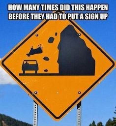 I hate it when a cow falls on my car!