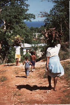 Up in the hills (Jamaica)