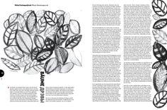 Esej: Michał Aniepadystau Iustracja: Ania Jaworska-Kruk #radar #pracowniagrafiki #tranzyt