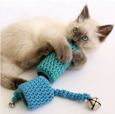 Crocheted Cat Toy