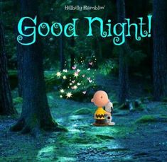 we life is good Good Night Love Quotes, Good Night Wishes, Good Night Sweet Dreams, Good Night Image, Good Morning Good Night, Goodnight Cute, Goodnight Snoopy, Gifs Snoopy, Snoopy Quotes