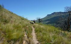 Contour single track, Stellenbosch Cape Town, Contour, Cycling, Trail, Country Roads, Fire, Mountains, Gallery, Places