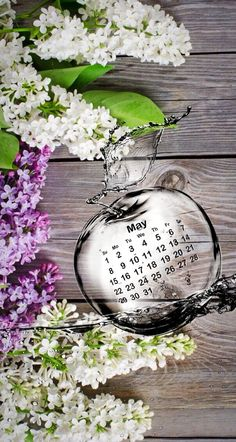 Wallpaper iPhone calendar may 2016 Calendar Wallpaper, Screen Wallpaper, Wallpaper Backgrounds, Hello May Quotes, Indian Wall Decor, Welcome Images, Red Pictures, Apple Wallpaper Iphone, Hearts And Roses