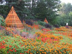 Orange Theme succeeds at Rotary Botanical Gardens