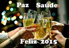 Como se virar na vida: Adeus ano velho, que venha 2015 com muito sucesso ...
