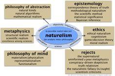 a realist take on naturalism