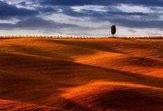 Lonely by Igor Gratzer, via 500px