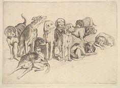 VÁCLAV - WENCESLAUS HOLLAR (1607–1677)  Eleven Hounds, 1625–77. The Metropolitan Museum of Art, New York.