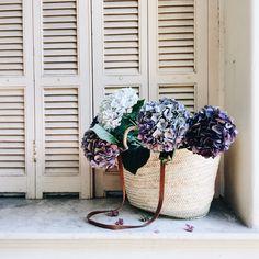 Vivi et Margot Classic French Market Basket  #baskets #marketbasket #bestonlineshops #frenchstyle #homedecor Market Baskets, Shop Around, Market Bag, Giveaway, Bloom, Classic, Floral, Flowers, Shops