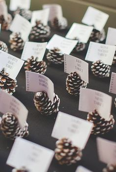 11 Evergreen Winter Wedding Decorations for That Chic Forest Feel - DIY escort card idea: Pinecones painted with snowy white tips - Wedding Table, Rustic Wedding, Our Wedding, Wedding Reception, Trendy Wedding, Wedding Seating, Reception Ideas, Reception Food, Fall Wedding