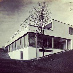 #Design #Tugendhat #Rohe Haus Tugendhat - Architecture by Mies van der Rohe 1931 - Foto: Rudolf de Sandalo © strandfilm, Pandora Film Verleih | Media