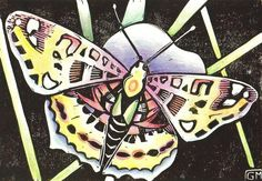 """Gabi Meyer's Linocuts. red butterfly  lino print and colored pencil on paper 8"""" x 5"""""""