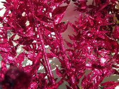 Glitter ruscus