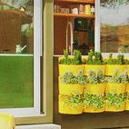 What a fun wall of plants - easy to do and so colorful they brighten your day - Five rows of yellow planters hang on the olive wall by the s-shaped outdoor pool.    Photo by Dabito.