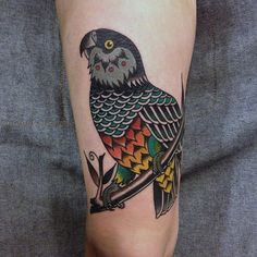 Stylized African Grey Parrot Tattoo. Traditional