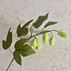 Crepe Paper Hops Vine Single Stem  Brewery Decor  by NectarHollow