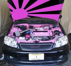 Wondering if I should put the Pink and Black rising sun.