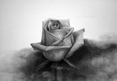 꽃그림(장미꽃) - 연