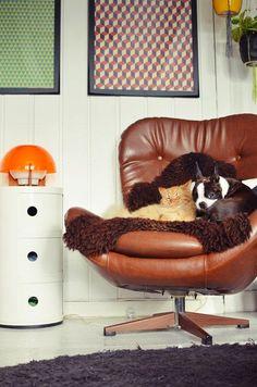 HOME & GARDEN: Relaxons nous !