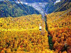 北海道最高峰を誇る「旭岳」の標高1,100mに位置する「山麓駅」からは、ロープウェイが絶景スポットまで運んでくれます。窓から見渡す景色は、まさに圧巻そのもの!約10分で「姿見駅」へ到着すると、大自然を満喫できる周遊コースが広がっています。