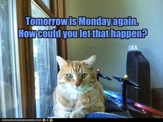 Tomorrow is Monday again.  How could you let that happen?