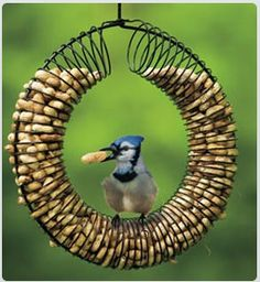 Bird feeder wreath made from an old Slinky. I just might have to make this!
