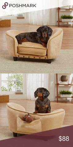 NWOT Fancy Pet Furniture bed Super cute. Bought it for my Yorkie but he wants nothing to do with it :(. Dimensions: 26.75W x 16D x 14.75H in. Dog Size: X-Small 1-10 lbs Features: Raised Filling: Polyester Material: Nylon, All Other Materials, Polyester Removable Cover: Yes Color: tan/beige  Great condition! No rips holes or stains. Price is FIRM MSRP: 105$+Tax Other