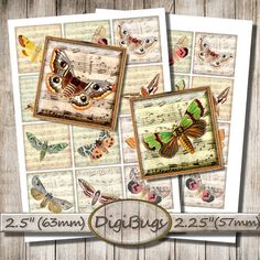 Butterflies Moths on Music Paper Background, Digital Collage Sheet,  Square Images, Butterfly Magnet Images, DigiBugs, Instant Download, a5