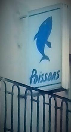 poisson bleu, poissons Epernay, enseigne Epernay, enseigne poissonnerie, animaux bleus, chasse aux photos Epernay, Epernay, Photos, Home Decor, Hunting, Pisces, Blue, Animaux, Pictures, Homemade Home Decor