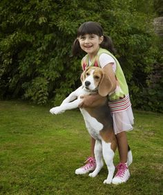 Beagle is among the Top 5 Family Friendly Dog Breeds :)