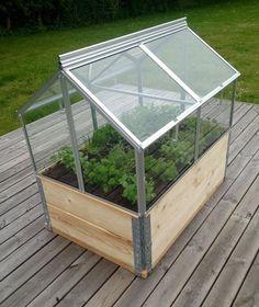 Vitavia Gaia Mistbænk minidrivhus Mål: 80 x 120 x 72 cm [Bilka] Garden Compost, Herb Garden, Home And Garden, Hydroponic Plants, Hydroponics, Ways To Stay Healthy, Urban Agriculture, Sustainable Living, Dream Garden