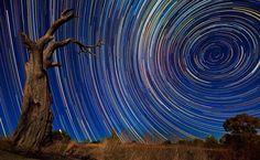 Lincoln Harrison / Australia