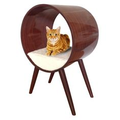The Penn Plax CatWalk Lavish Infinity Bed gives your cat a stylish place to sleep and loiter This raised cat bed might become your cat's favorite place to lounge! Modern Cat Furniture, Furniture Sale, Bed Furniture, Furniture Design, Cat Tree Designs, Heated Cat Bed, Pembroke Welsh Corgi, Buy A Cat, Ideas