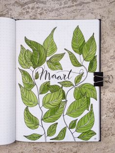 Created using the Greenstory STONE notebook, our Eco-friendly notebook actually made of stone! #BulletJournal #Bujo #spreads