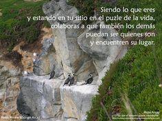 Mount Rushmore, Sayings, Nature, Travel, Blog, Happy, Setting Boundaries, Viajes, Lyrics