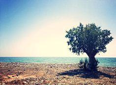 Keratokambos, Crete....