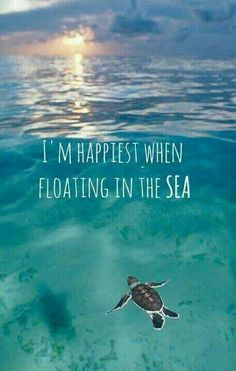 i'm happiest when floating in the sea