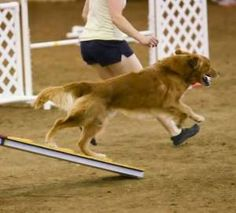 BREAKING THE MYTH OF AGILITY JUST FOR FUN