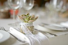 Succulent with lace Real Weddings, Succulents, Table Decorations, Lace, Pretty, Home Decor, Decoration Home, Room Decor, Succulent Plants