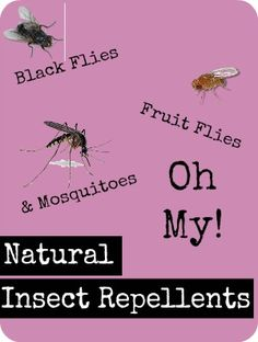 "Natural Insect Repellents - Ideas, Recipes & DIYs: A long list of natural ways to repel bugs from your skin, pets, coop, barn, garden and house. Also some great natural remedies you can use as ""after bite"". 