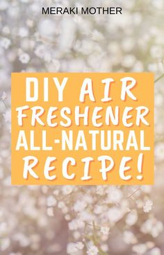 Make your home smell amazing with any of the chemicals! Get the recipe for this DIY all-natural air freshener. #airfreshener #diycleaning #ecofriendly #sustainableliving #cleaning Natural Air Freshener, Home Air Fresheners, Diy Cleaning Products, Cleaning Hacks, Pet Urine, Odor Remover, House Smells, Sustainable Living, House Colors