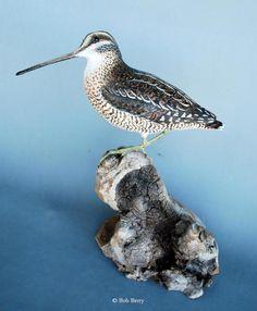Shorebird Carvings by Bob Berry 9