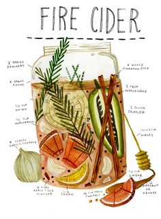 Fire Cider is an increasingly poplar herbal folk remedy that is a pleasant (if you like particularly hot foods) and easy way to boost natural health processes, stimulate digestion, warmed up on the on. Herbal Medicine, Natural Medicine, Holistic Medicine, Kitchen Witch, Herbal Tea, Book Of Shadows, Food Illustrations, Tea Recipes, Herbal Remedies