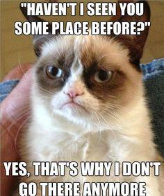 Not anymore. Grumpy Cat