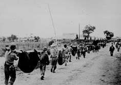 """""""This picture, captured from the Japanese, shows American prisoners using improvised litters to carry those of their comrades who, from the lack of food or water on the march from Bataan, fell along the road."""" Philippines, May 1942."""
