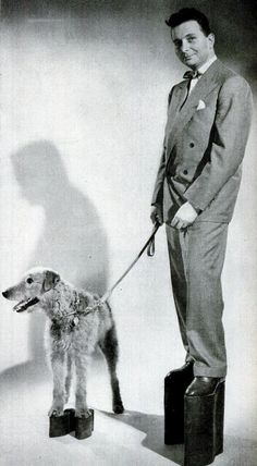 "Radio Personality Henry Morgan and his Airedale Terrier, Shag, model an early Morgan product, Adler Elevator Shoes (""Now you can be taller than she is""). Sponsor Adler first resented, then tolerated and finally applauded antics like this. c. 1947"