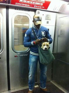 You can only take your dog on the Subway if it can ride in a bag...