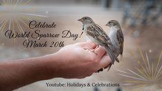 Holiday Dates, Celebrations, Holidays, World, Youtube, Animals, Holidays Events, Animales, Animaux